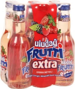 Uludağ Frutti Extra Orman Meyveli 250 ml x 6 Adet