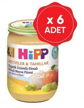 Hipp Organik Üzümlü Elmalı Pirinçli Meyve Püresi 190 Gr x 6 Adet